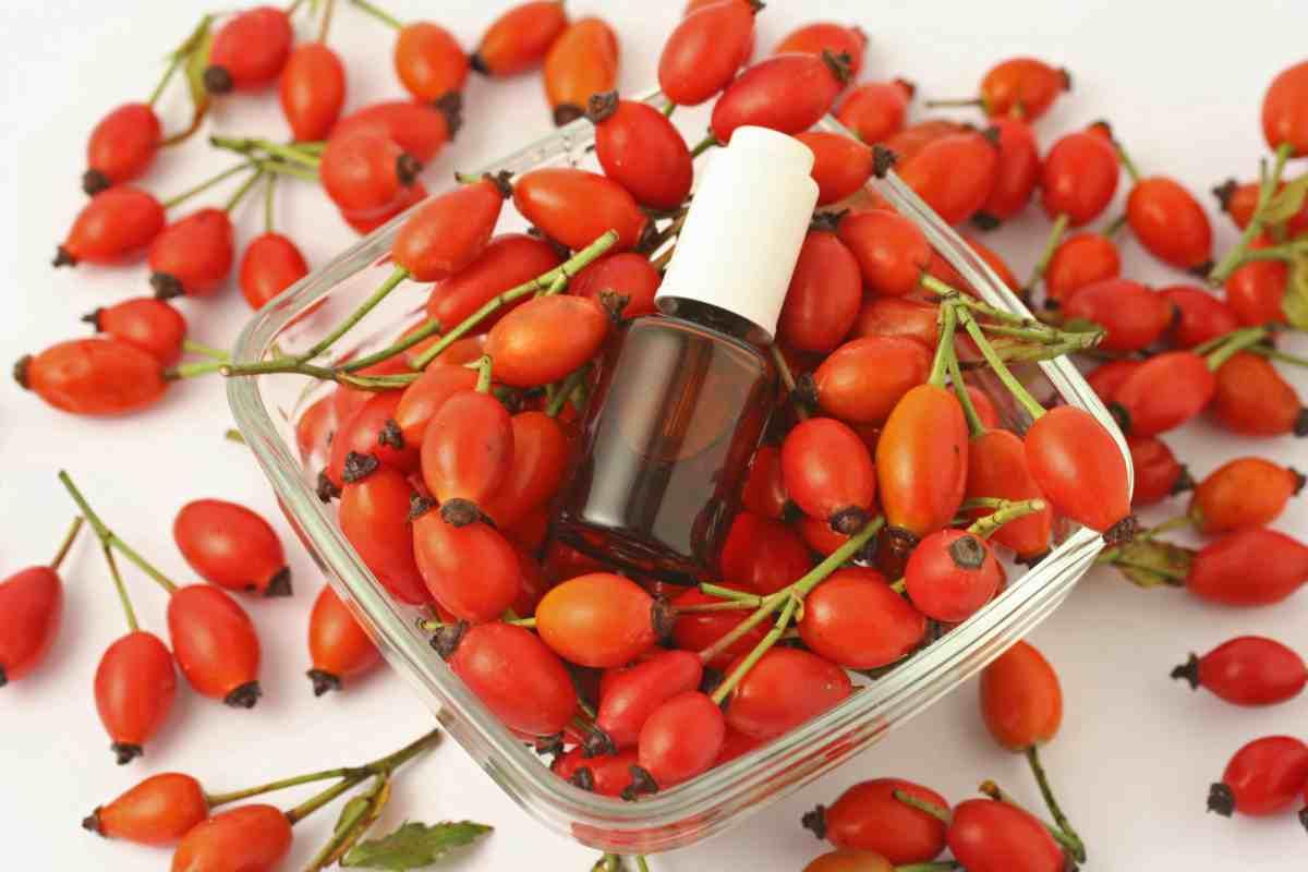 Olio di Rosa Mosqueta le molteplici proprietà per la pelle
