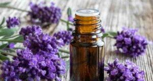 Olio essenziale di lavanda le proprietà per la pelle