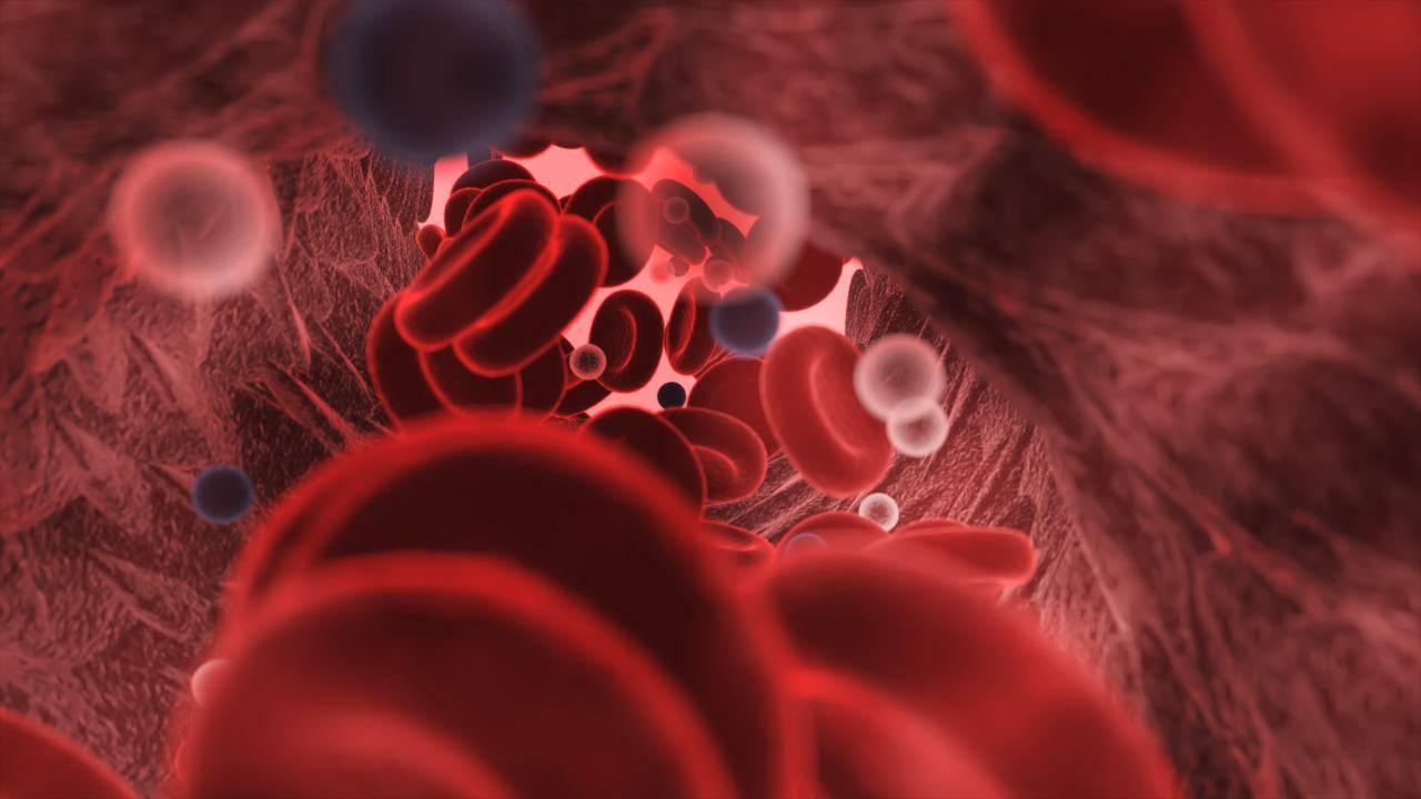 coronavirus gruppo sanguigno