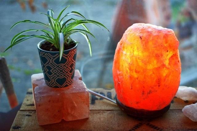 Ecco perché dovresti avere la LAMPADA di SALE in casa | Tutti i benefici