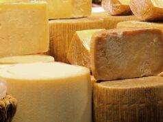 forme di formaggio pecorino