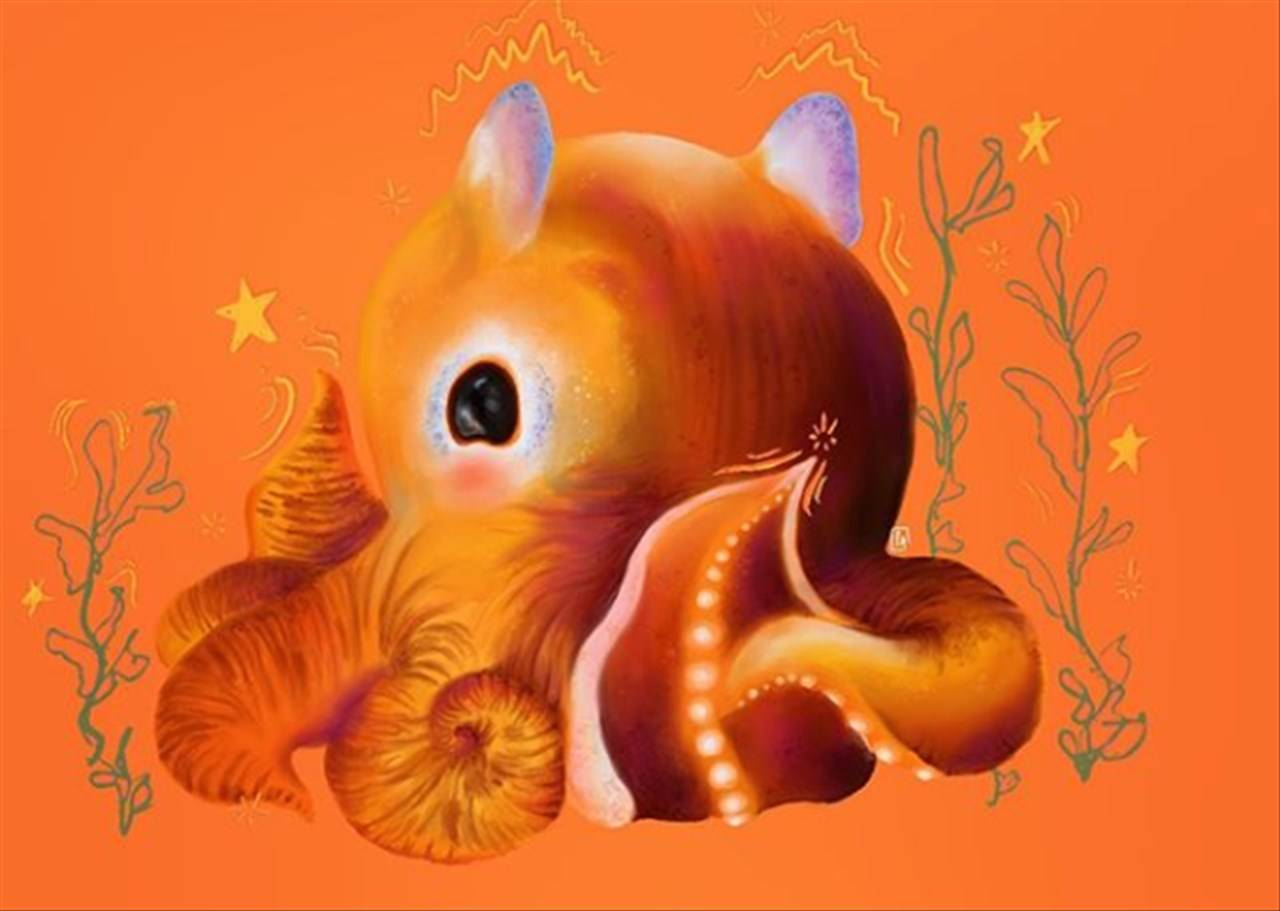 polpo dumbo arancione
