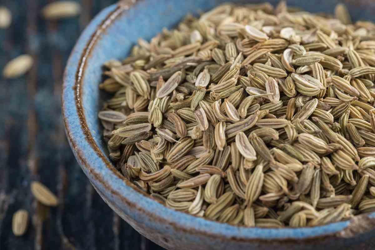 semi di finocchio in ciotola