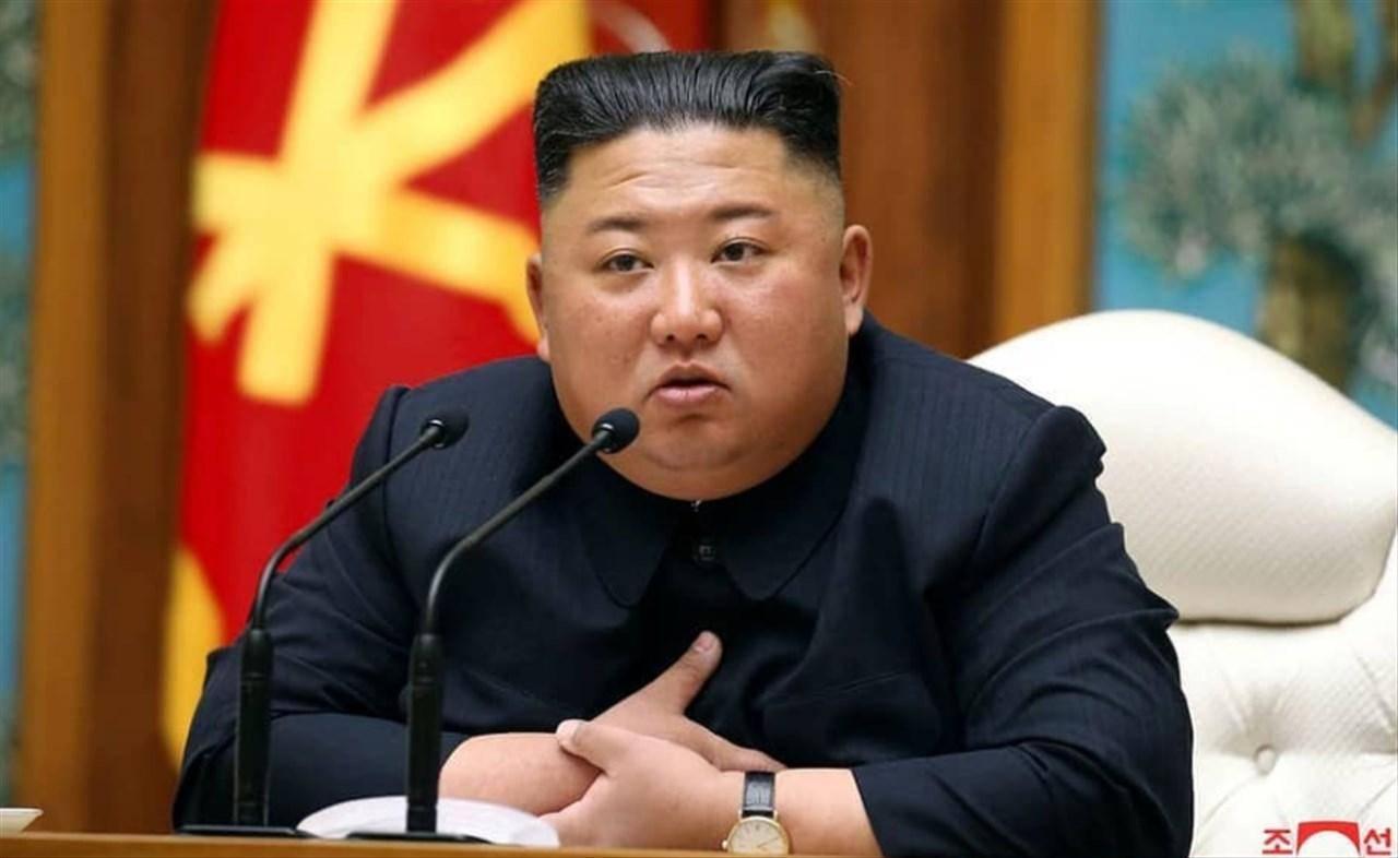 Corea del nord cani