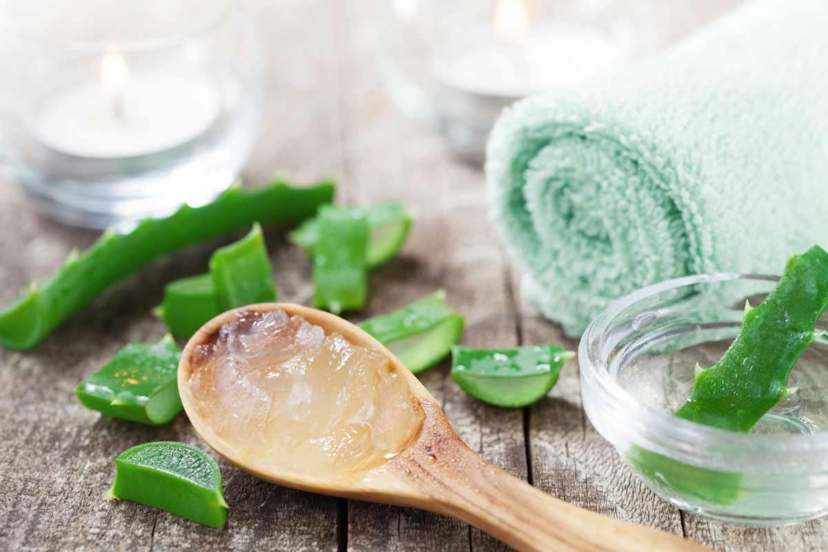 Come utilizzare il gel di aloe vera