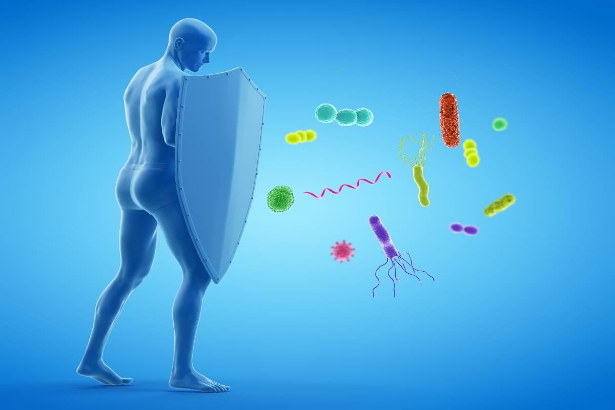 Fortificare il sistema immunitario