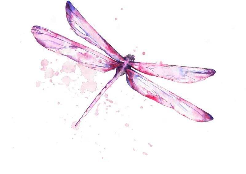 sognare una libellula significato