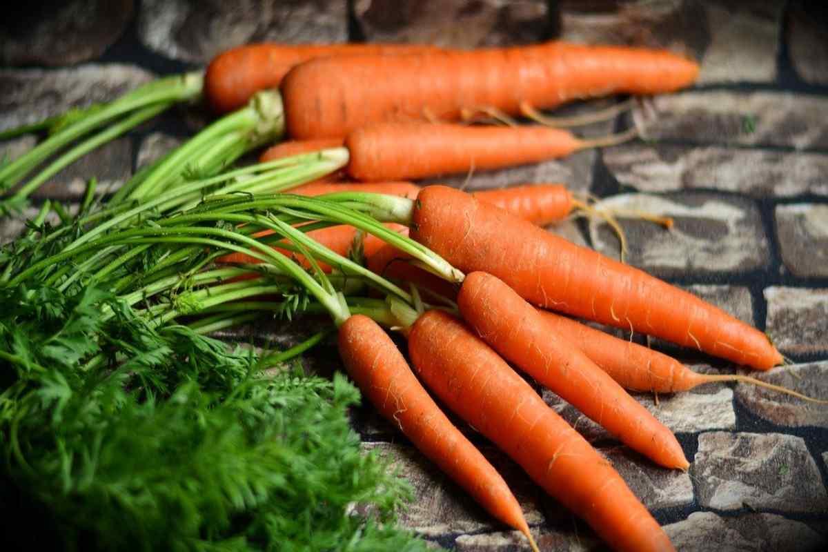 Come conservare le carote