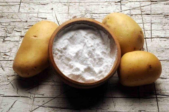 Fecola di patate come sostituirla