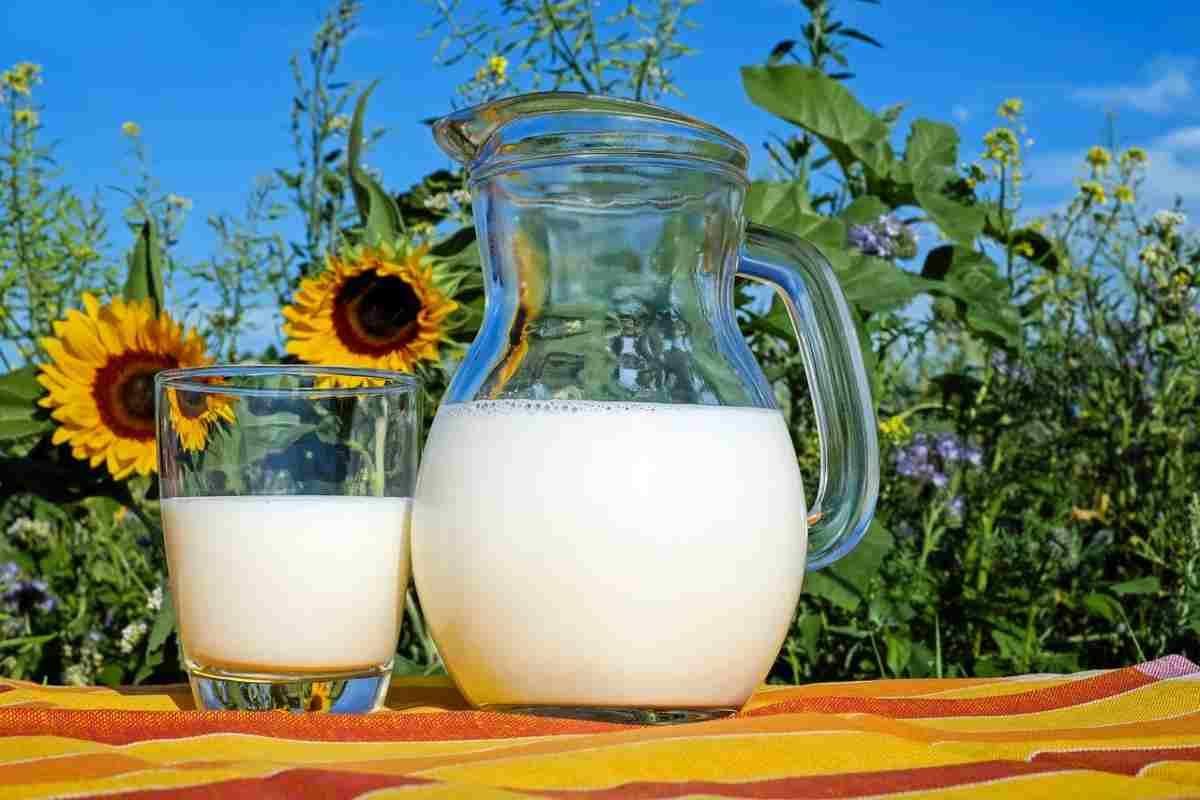 Latte fresco come riconoscere