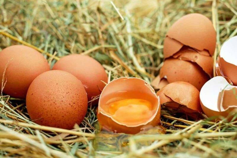 Come riconoscere uova fresche