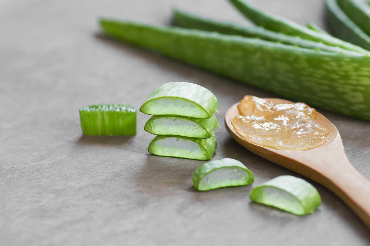 Aloe Vera per curare acne
