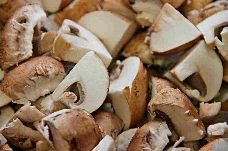 funghi nella dieta