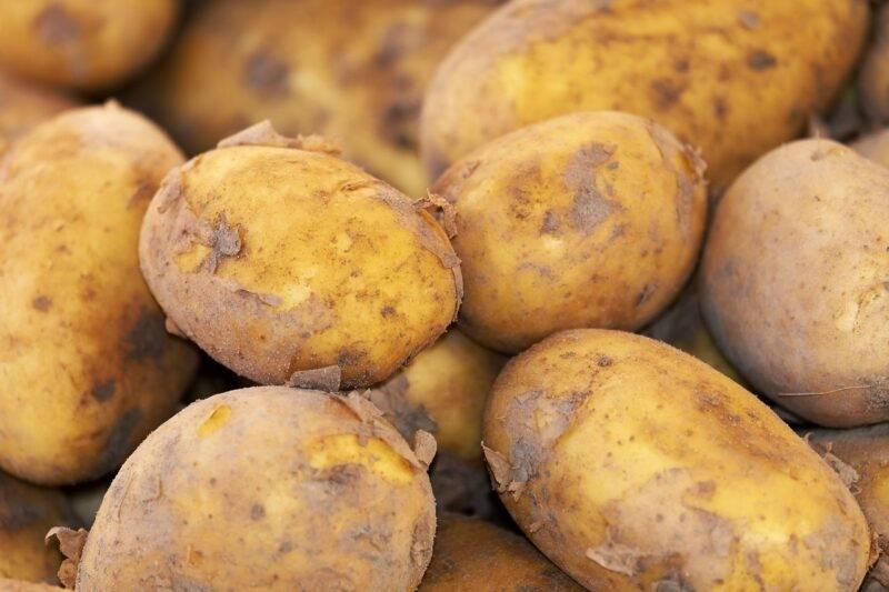 Patate: trucchi utili per conservarle e farle durare di più