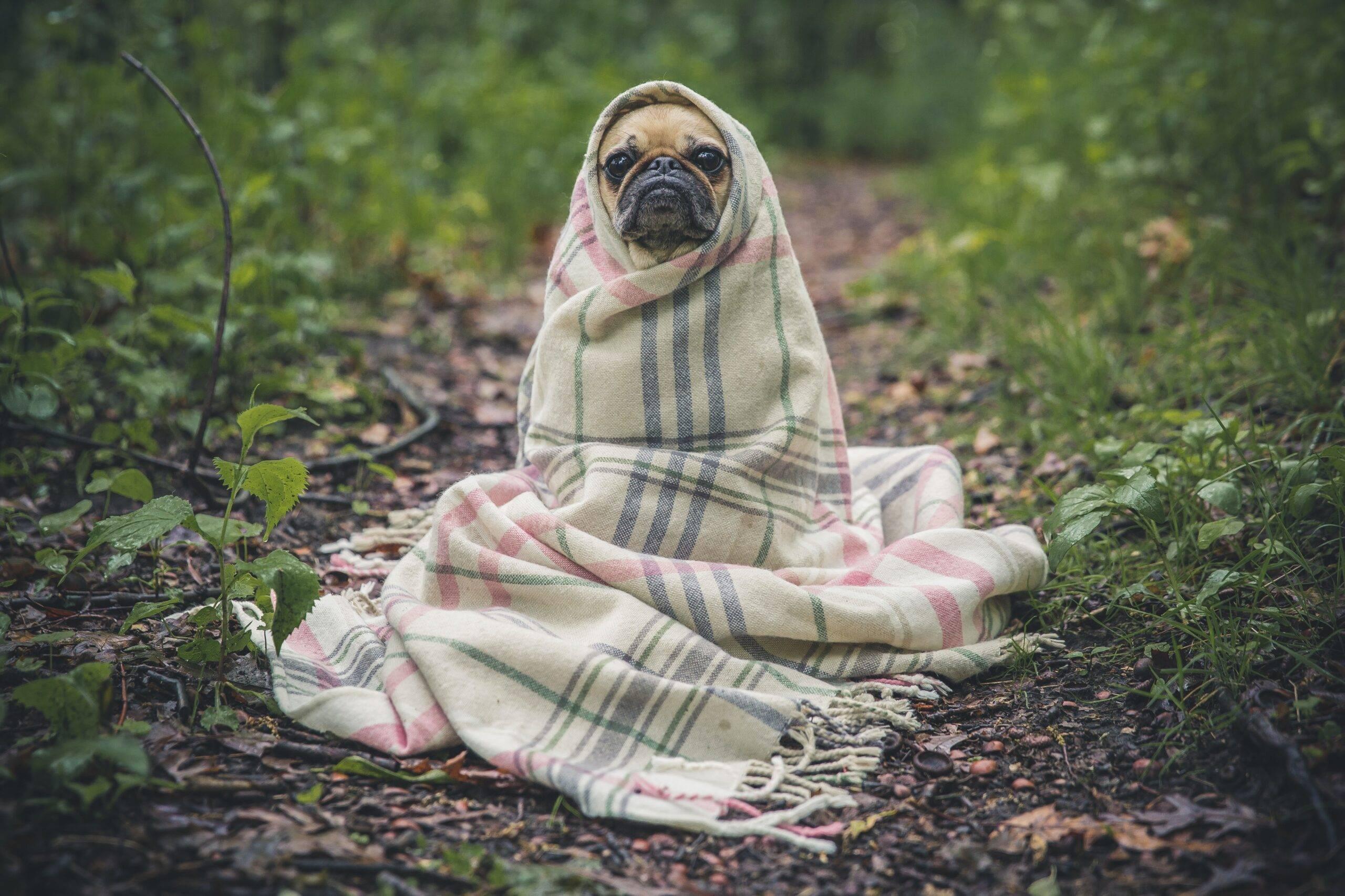 freddo settembre