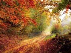 Sentiero dei Parchi