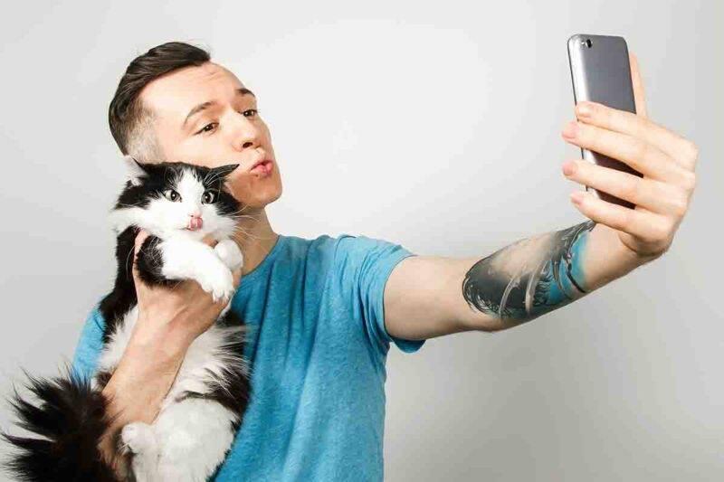 uomo gatto e virilità