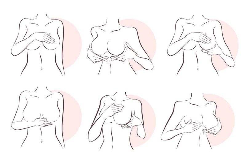 seno caratteristiche salute