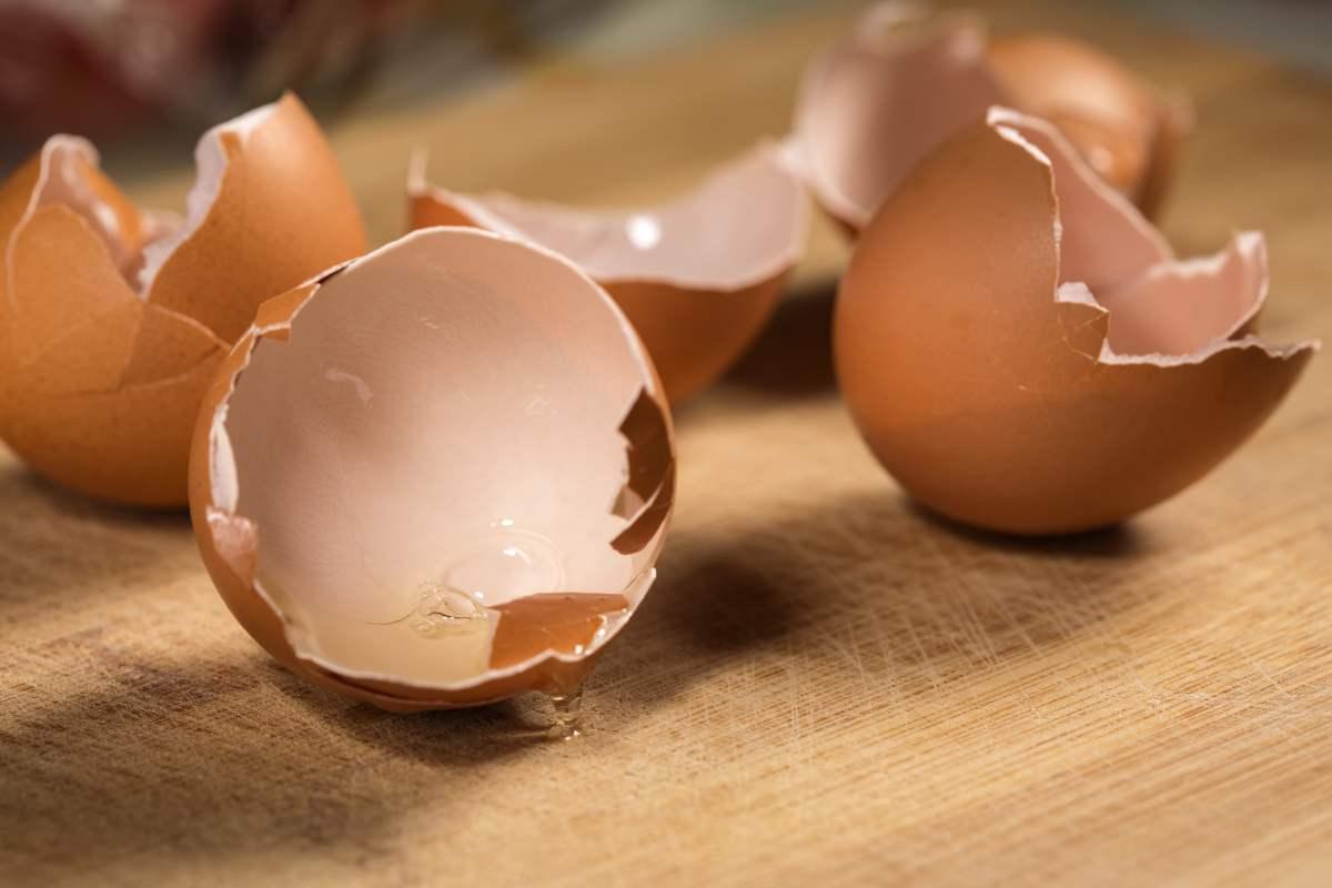 Riutilizzare i gusci delle uova