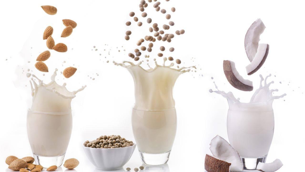 latte vegetale alternativo intolleranza lattosio