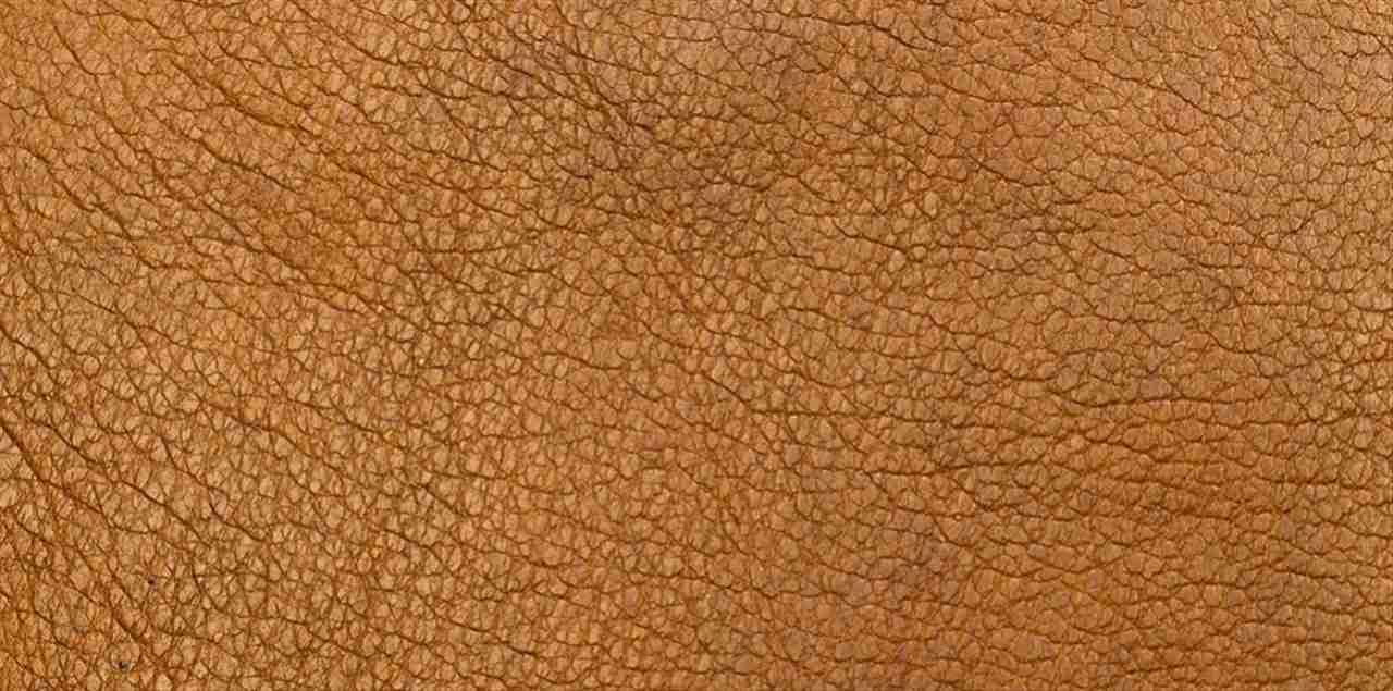 pelle tendenza atopica