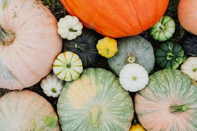 Autunno: tutti gli alimenti utili per rinforzare il sistema immunitario