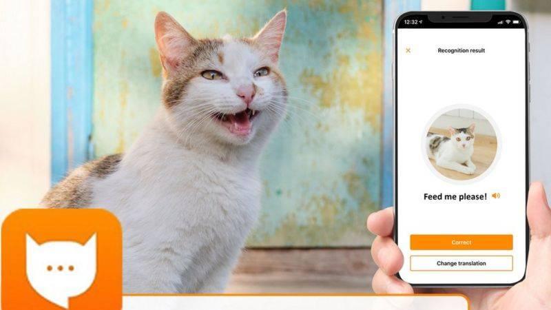 app traduttore gatti