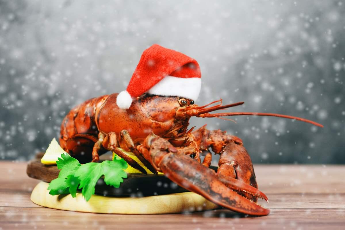 Vigilia di Natale: tutte le ricette senza carne, sfiziose e facili!