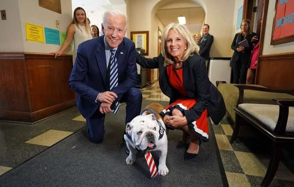 joe biden cani