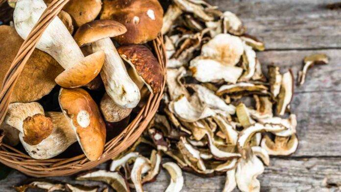 funghi per dimagrire