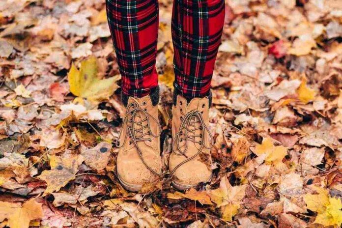 Riutilizzare foglie secche
