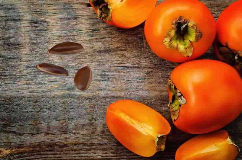 interpretare semi del cachi