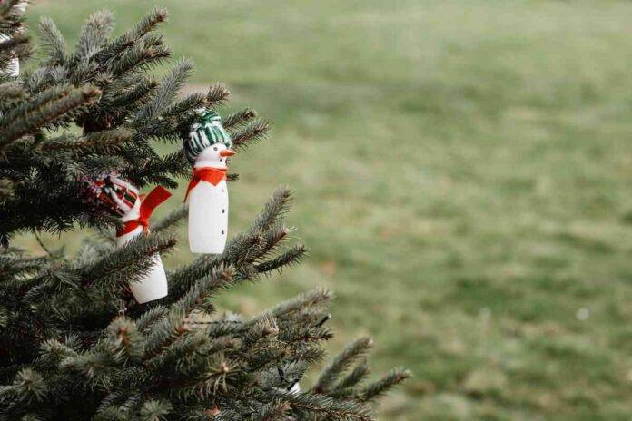 Lavoretti Di Natale Con Piatti Di Plastica.Idee Di Natale Lavoretti Con Bottiglie Di Plastica