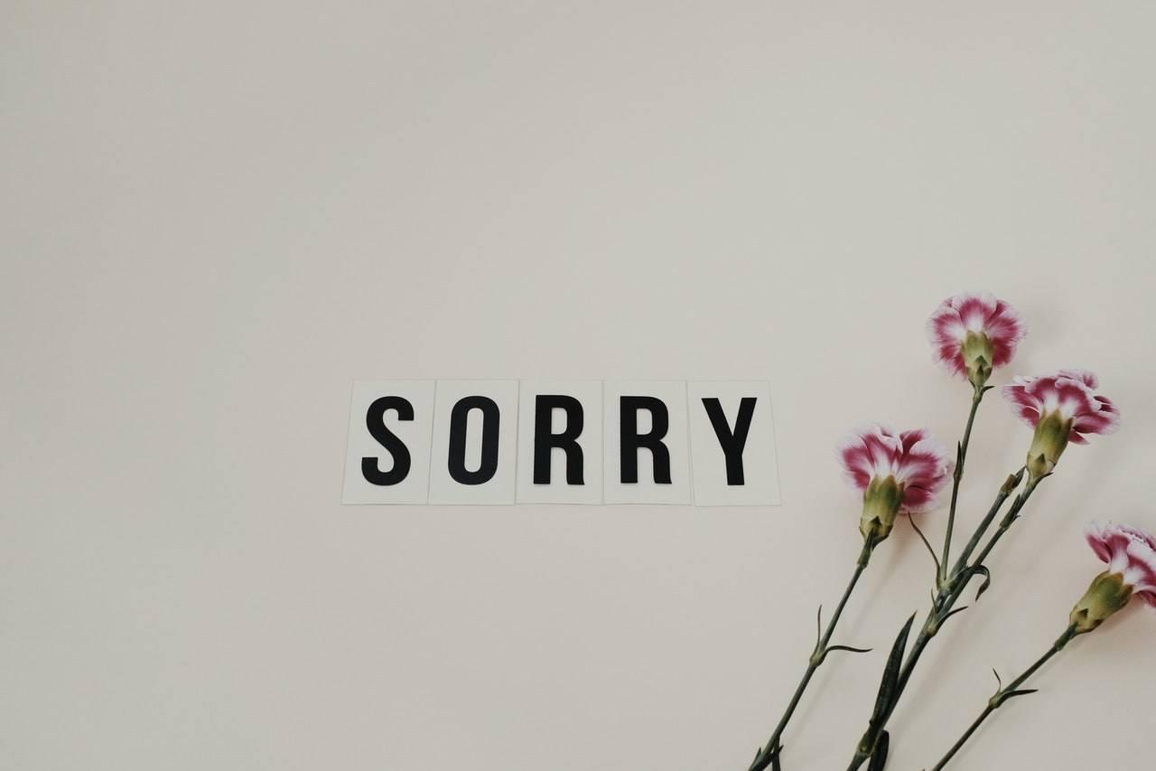 scuse non sincere