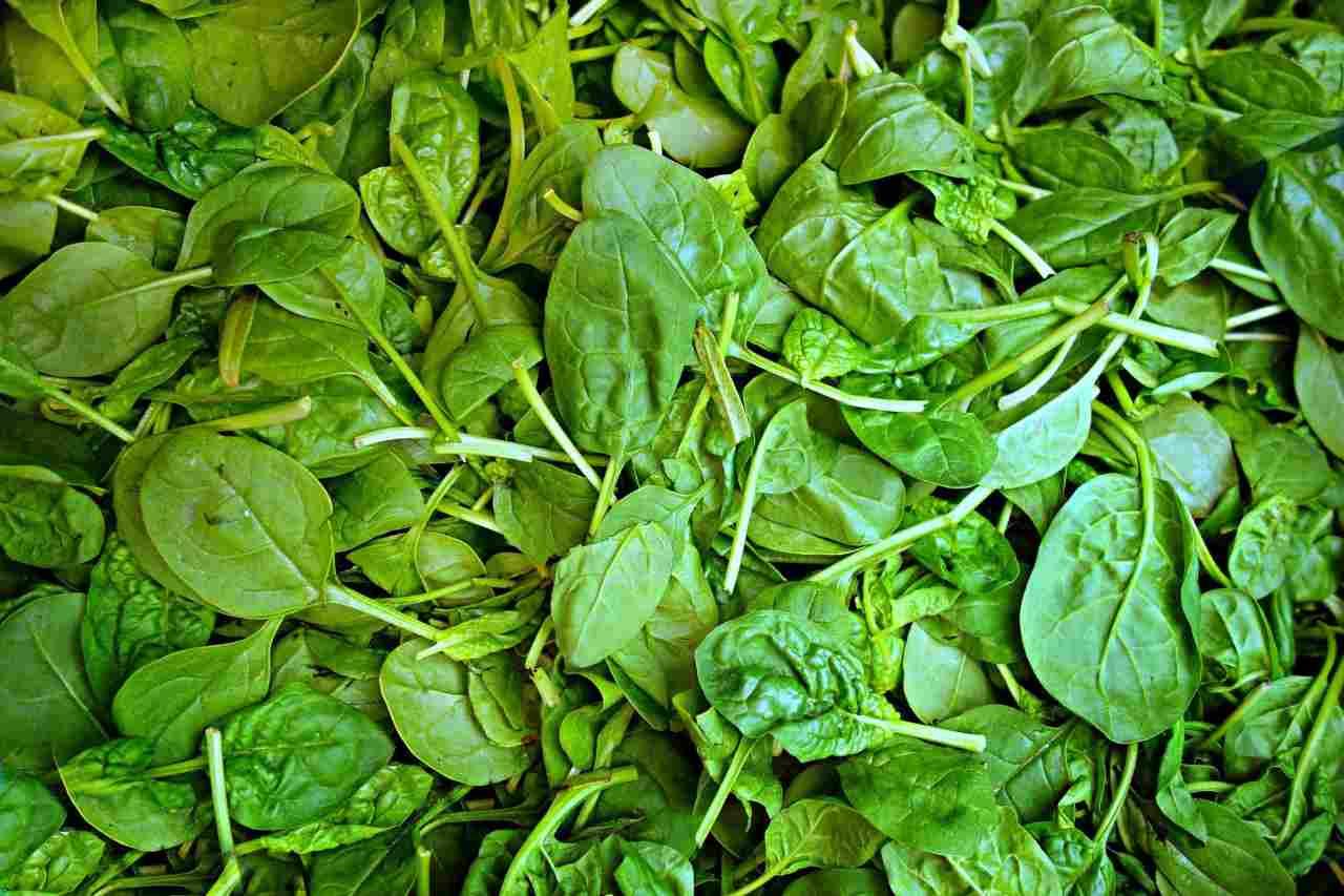 cena spinaci