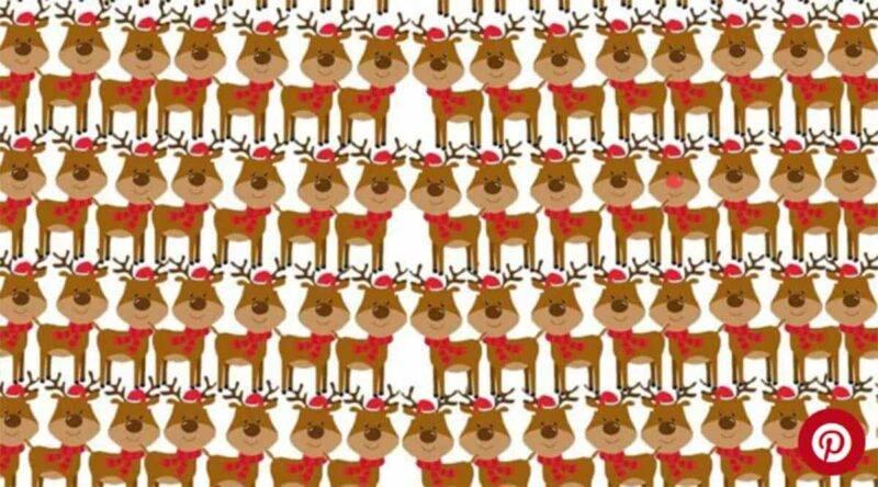 test renna Rudolph
