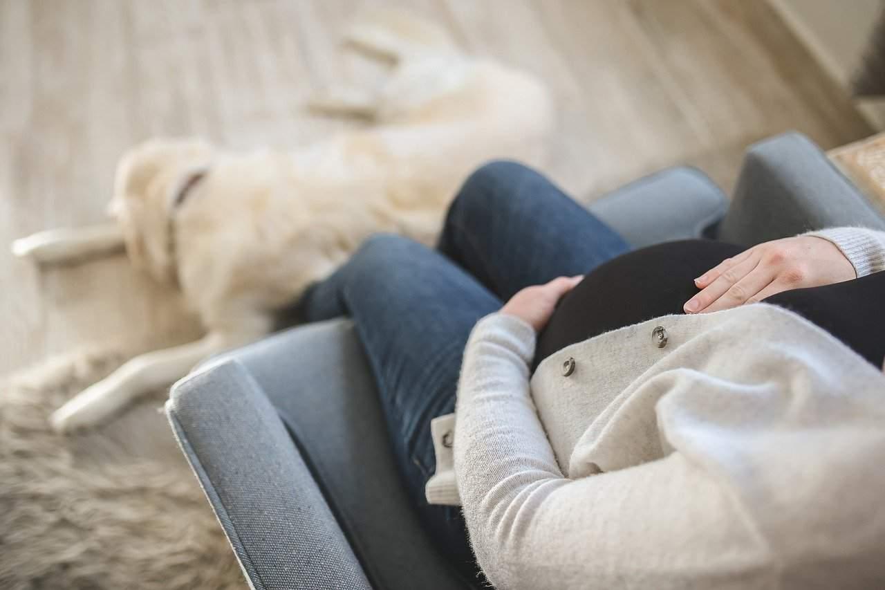 donna incinta con il cane