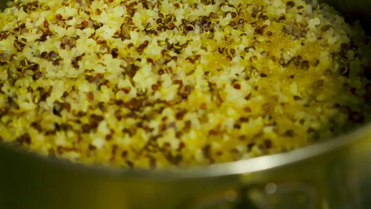 cucinare quinoa