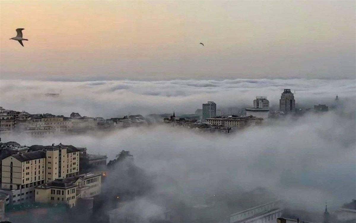 Nebbia italia genova