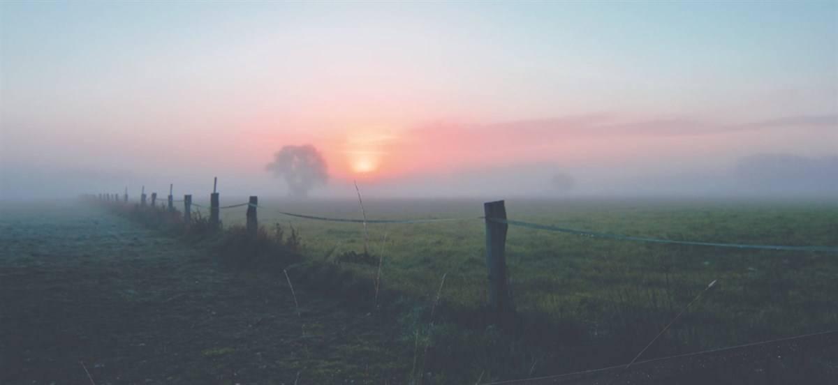 meteo nebbia