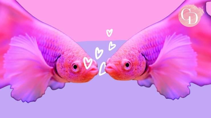 wokefish