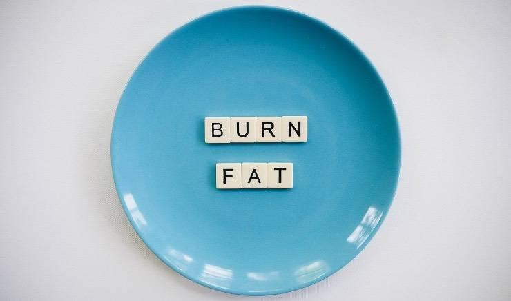 brucia grassi