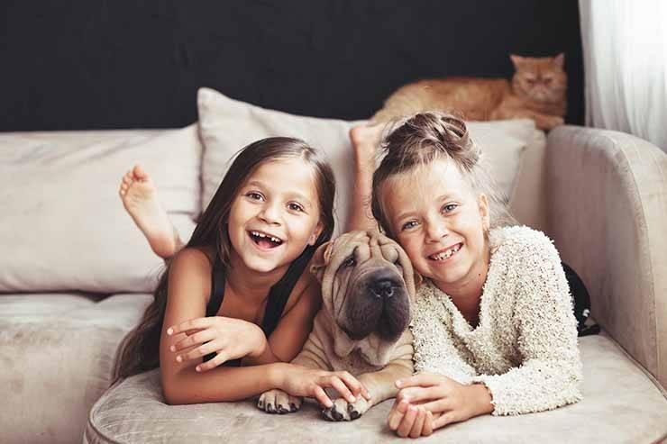 segreto famiglia felice
