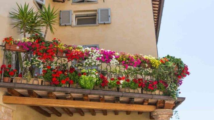 balcone curato