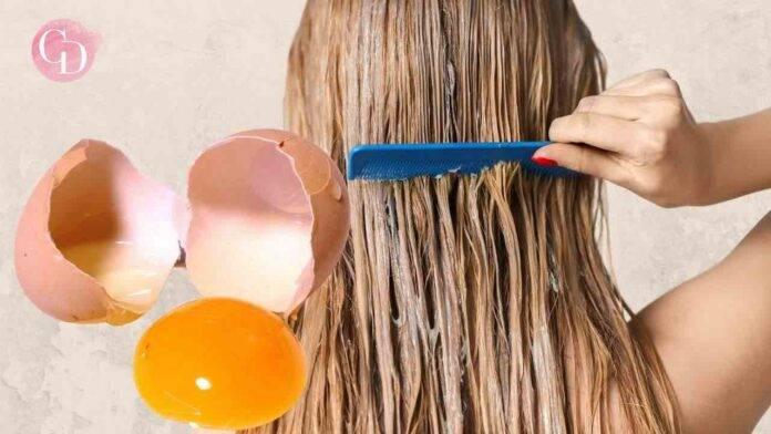 capelli uovo