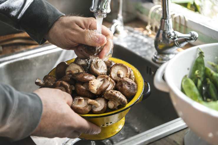 lavaggio funghi