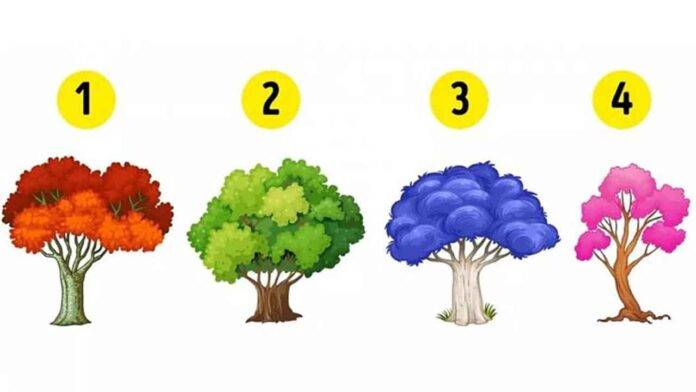test personalità albero