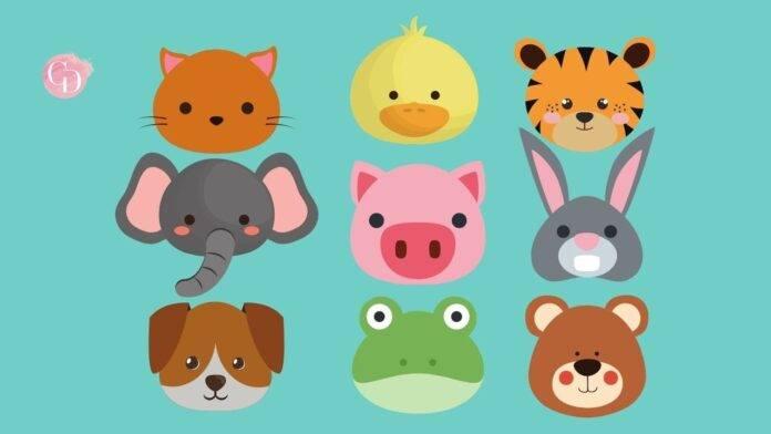 test animali personalità