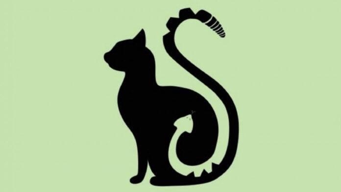 test gatto serpente