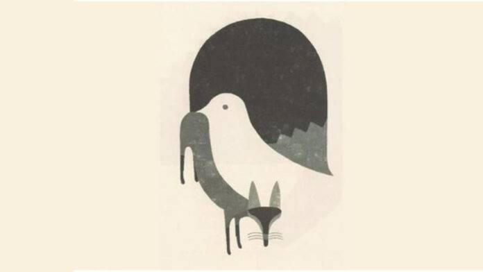 test personalità piccione volpe